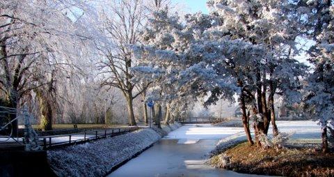 Prettige jaarwisseling - Allemaal een gezond, gelukkig, inspirerend, fotogeniek en voorspoedig 2011.