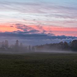 Mistig herfst in Zweden