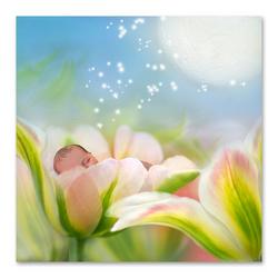 Tulpenfantasie