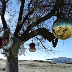 Kerstboom in Ilha Da Cultura (Bij Faro, Portugal)