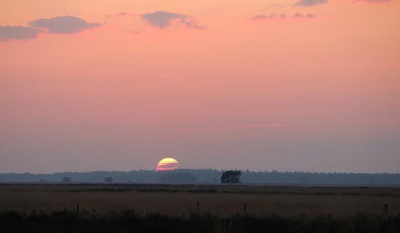 Sunset Dwingelderveld - Alsof ik op een Safari was gisteravond maar het is gewoon het Dwingelderveld in Drenthe, waar ik vaak kom