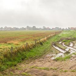 Panorama Mist op Texel.