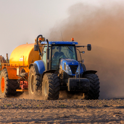 Droog op t maisveld