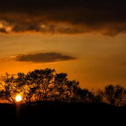 Zie de zon schijnt door de bomen....