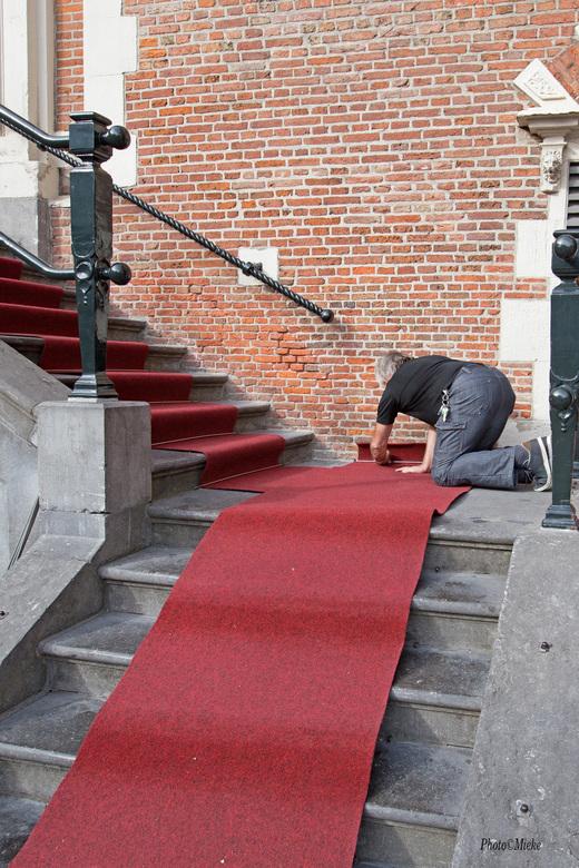 """De Rode Loper - Zo ineens word de rode loper voor je uitgerold<br /> <br /> Bedankt voor jullie reacties op het <a href=""""https://zoom.nl/foto/macro/"""