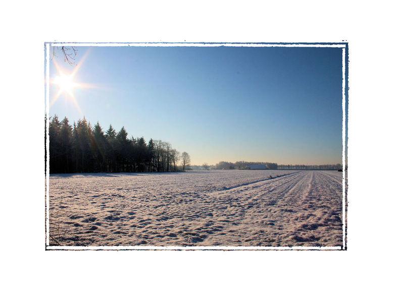 sneeuwvlakte - Deze foto is van vorig jaar januari....Het is de akkerbouwgrond van de boer voor ons<br /> iedereen bedankt voor de reactie&#039;s bij
