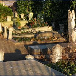 graf met trouwste vriend erop afgebeeld