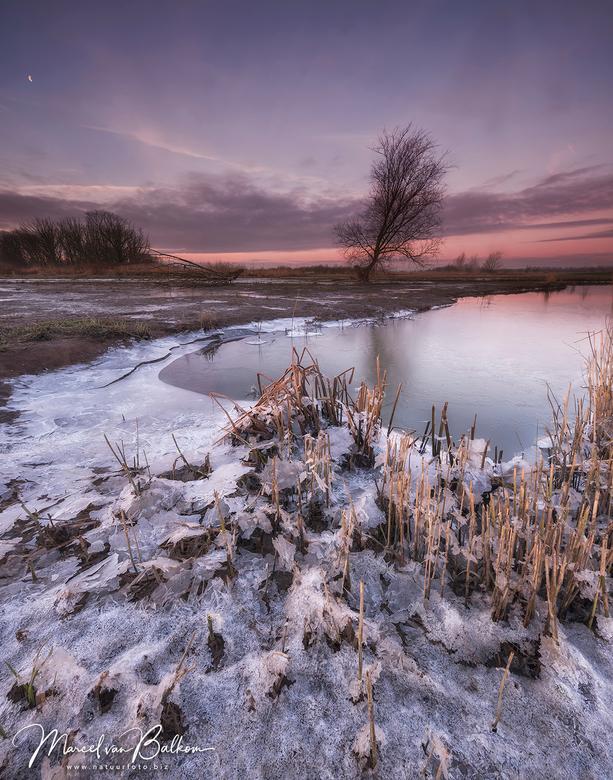 Arctische Biesbosch - Arctische Biesbosch,<br /> <br /> Deze morgen even hoofd leeg maken in een prachtige Arctische Biesbosch ... Dit beeld wil ik