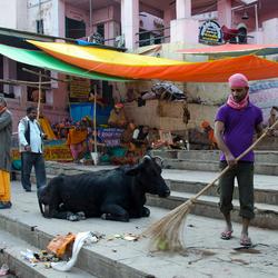 Varanasi koe.jpg