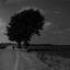 De eenzame fietser (1 van 1)