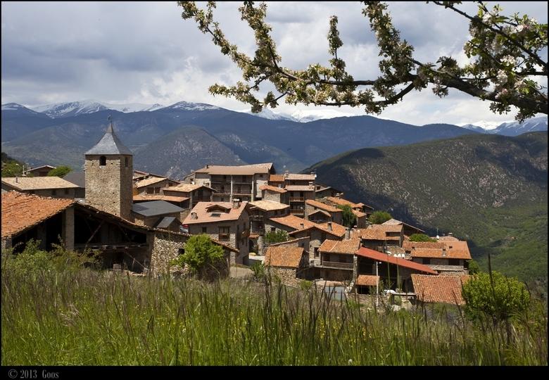 Pyreneeën 15 - *