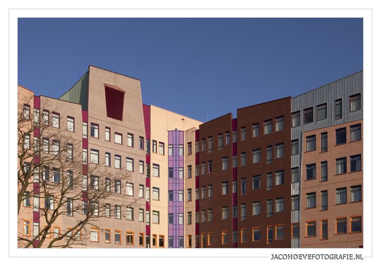 Nieuwbouw - Isala Klinieken (5) - Nieuwbouw - Isala Klinieken in Zwolle.