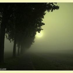 Verloop in de mist 3