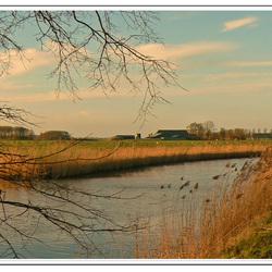 Groninger landschap
