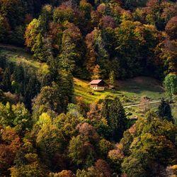 Herfst in swiss Alps