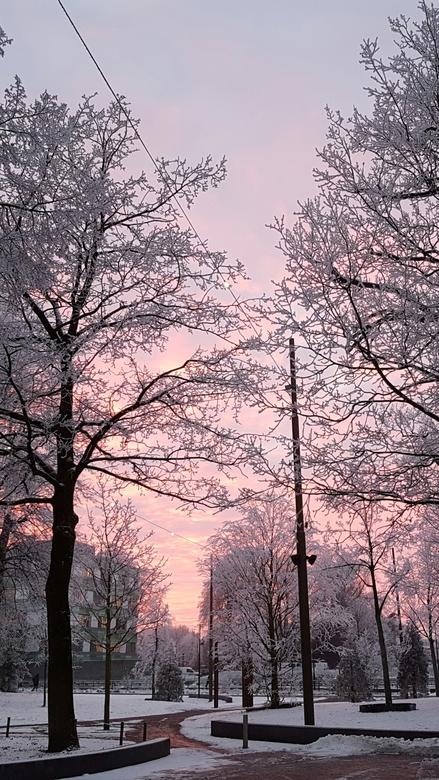 Roze zonsondergang - Een prachtige roze zonsondergang in hartje Emmen.