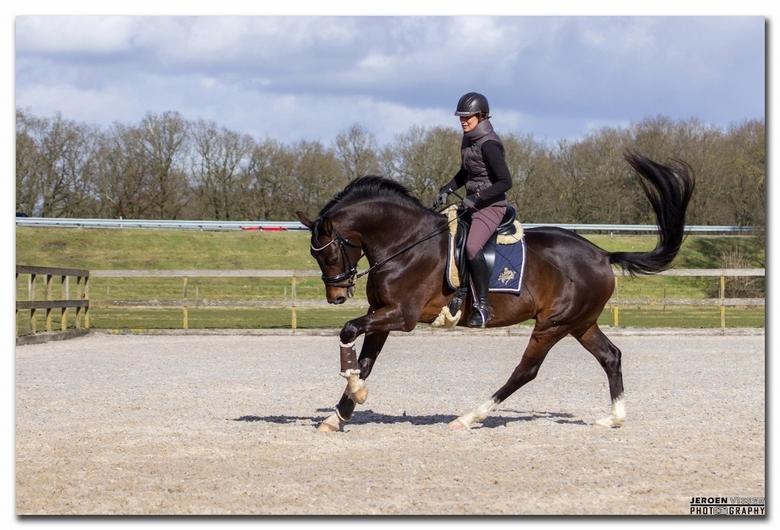 1pk - De paardenkracht (Nederlands symbool pk en vaak zo uitgesproken) is een oude eenheid van arbeidsvermogen, waarvan het gebruik sinds 1978 – bij d
