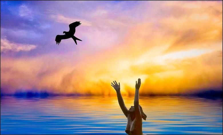 ik wil meevliegen....... - naar verre landen, weg van de corona.... maar die is overal, dus waar kan ik heen...........<br /> vluchten kan niet meer.