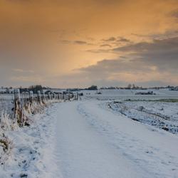 sneeuw in Vlaanderen