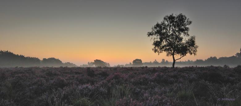 De Dag Breekt Aan - Vlak voor zonsopkomst in Nationaal Park De Meinweg