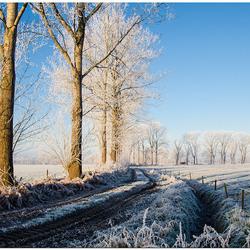 winters landschap