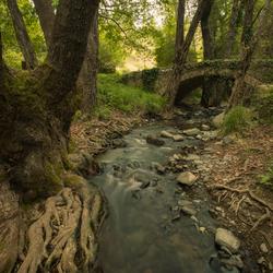 Troodos gebergte, Cyprus