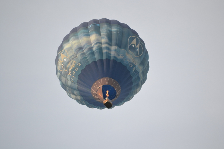 Luchtballon - Deze luchtballon kwam net laag over, mooi contrast met de ballon en de lucht.