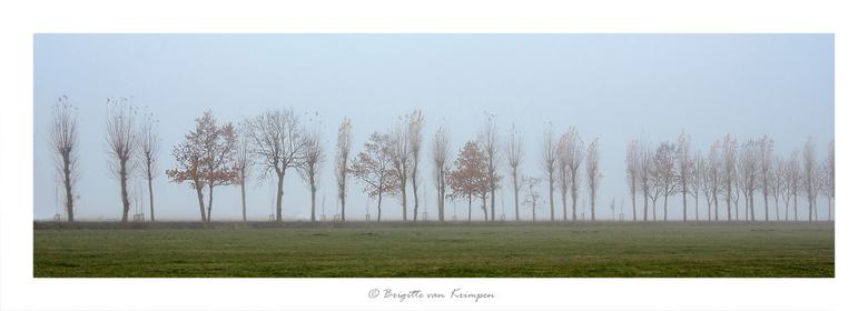 Misty Morning - Vanochtend vroeg in de polder van Midden-Delftland<br /> Koud en genieten
