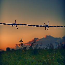 Border Sundown