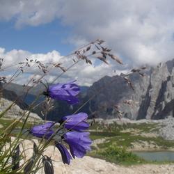 Tre Cime di Lavaredo (Dolomiti, Italie)