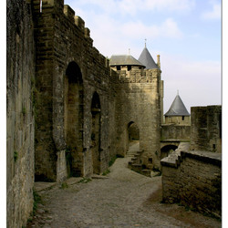 Carcassonne (5 )