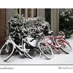 Sneeuwfietsen 3