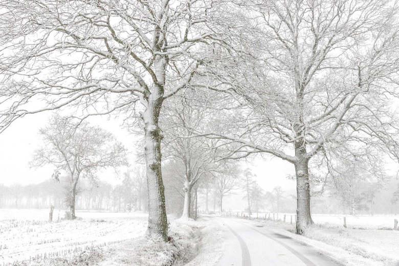 Eerste sneeuw in Limburg