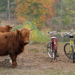 Bewaakte fietsenstalling
