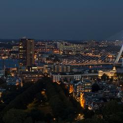 Zoomavond 2017 - Rotterdam