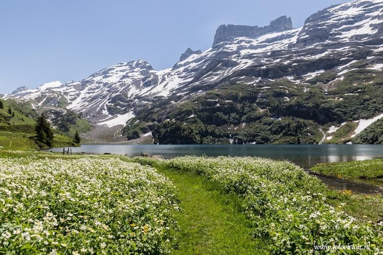 """Engstlensee  - Hier een opname van de Engstlenalp in Zwitserland, meer zien van deze alp kijk even op mijn site <a href=""""http://www.fotovictoir.nl/"""">h"""