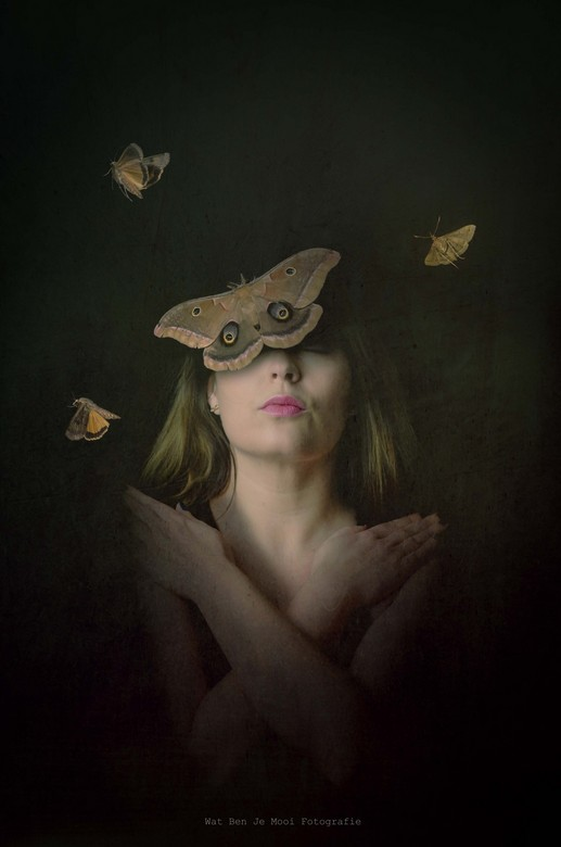 Butterfly effect - It's all about change...