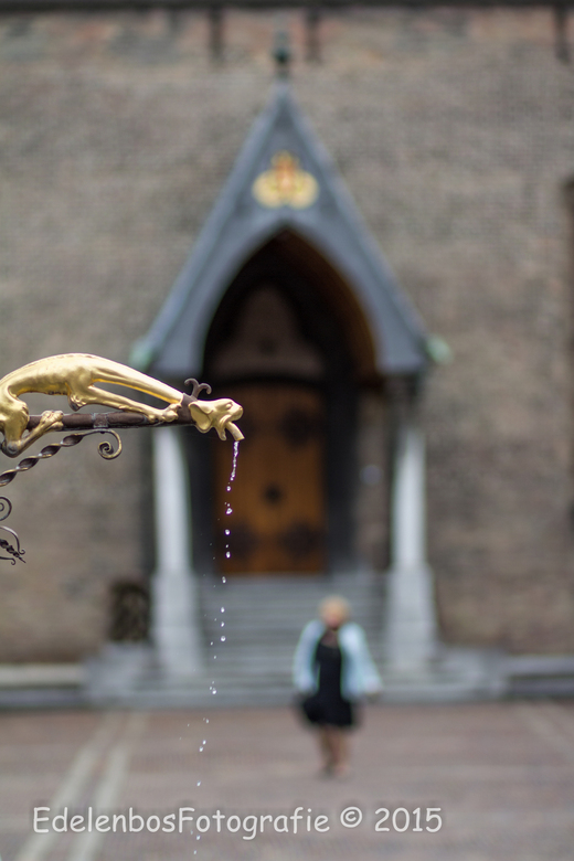 Den Haag © 2015 EdelenbosFotografie-3521