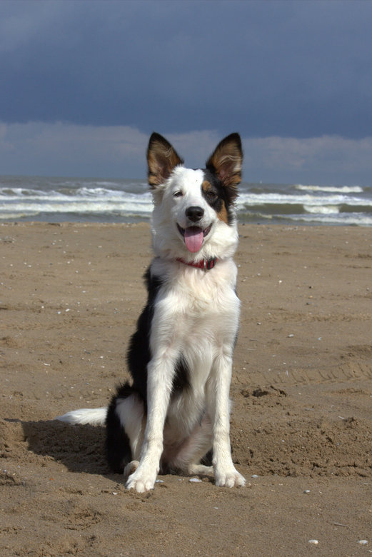 Jaily haar eerste keer op het strand -