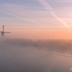 Foggy morning in the Netherlands