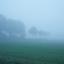 Polderlaantje in de mist