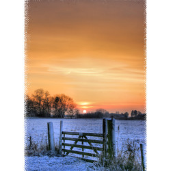 winter 2010(2)