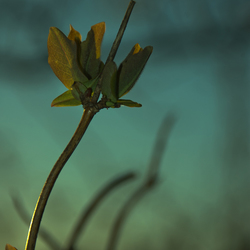 Spring art 1