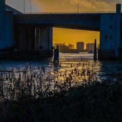 De Maas met het zicht op Rotterdam