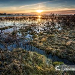 Hoog water in de IJsseldelta