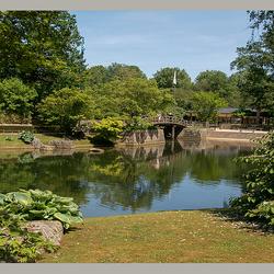 Japanse Tuin in Hasselt 3