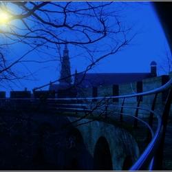 """maanlicht"""
