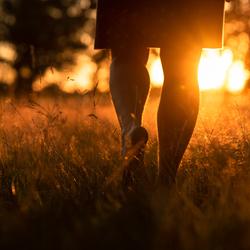 Walk into the light..