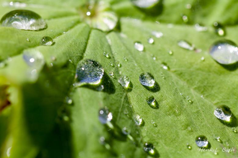 Druppels - Na regen komt altijd weer zonneschijn