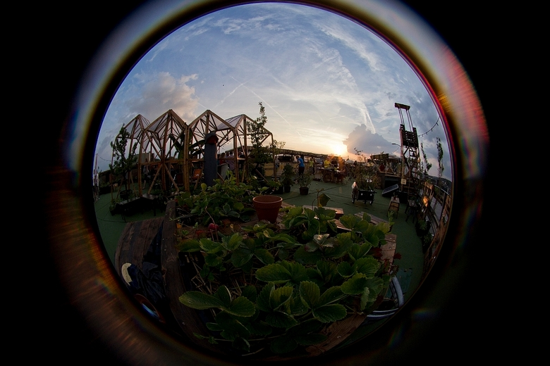 roofgarden ii - .